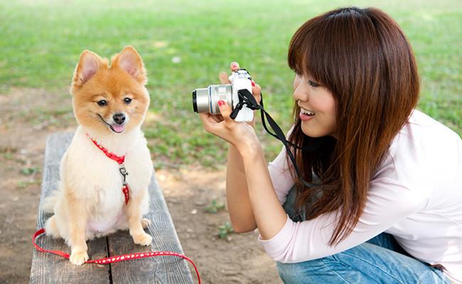 10 профессиональных советов для фотографов-любителей