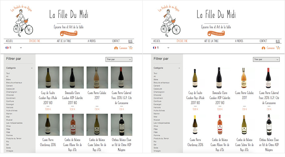 La Fille Du Midi updated website