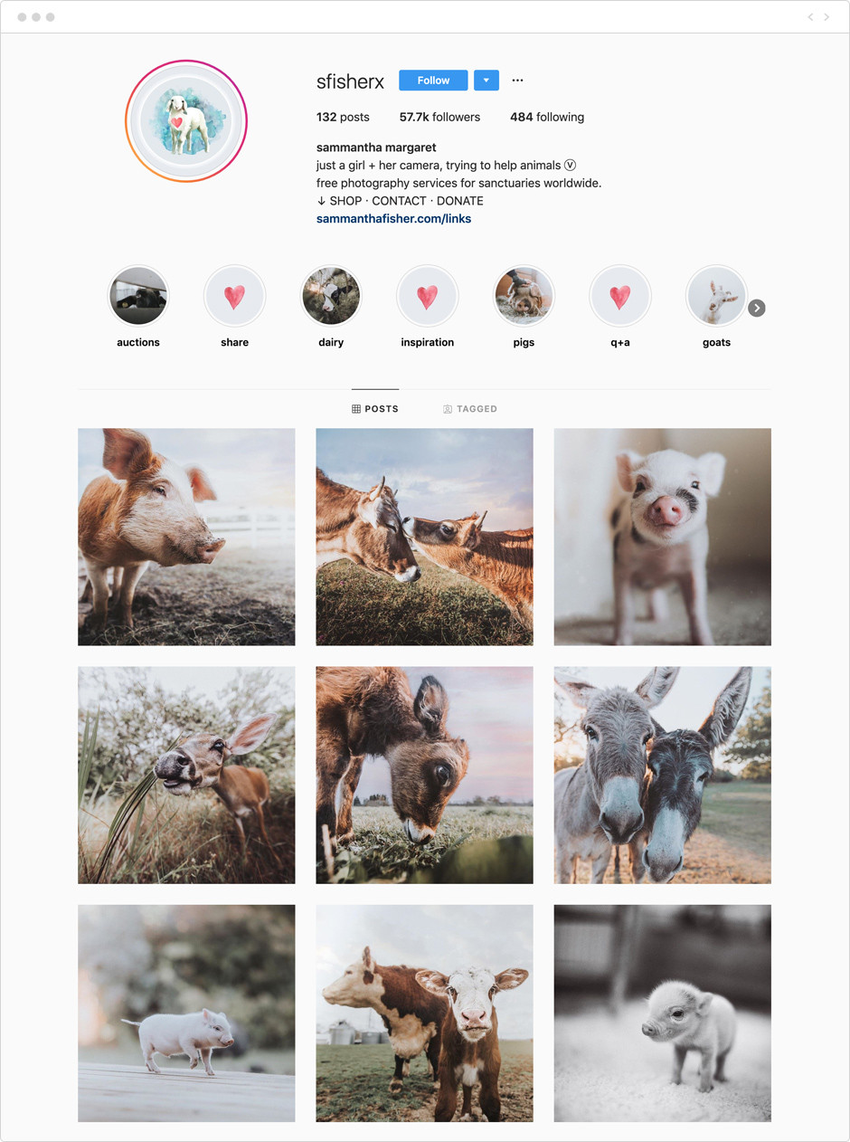 Sammantha Fisher - Photographes à suivre sur Instagram