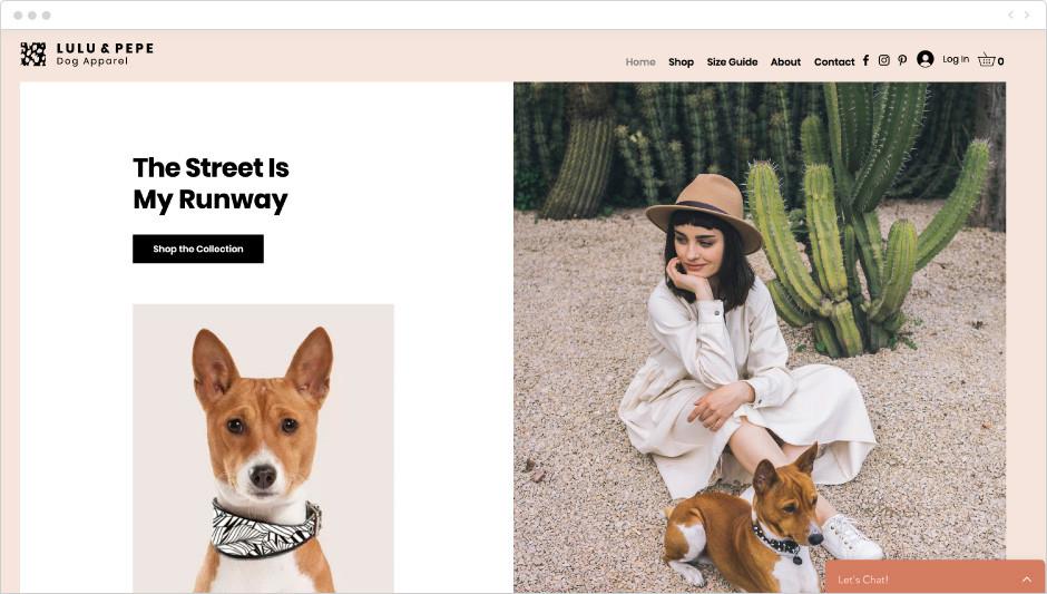 Dog apparel shop template