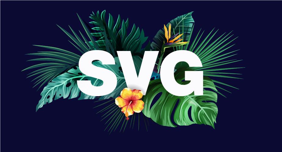 format d'image - svg