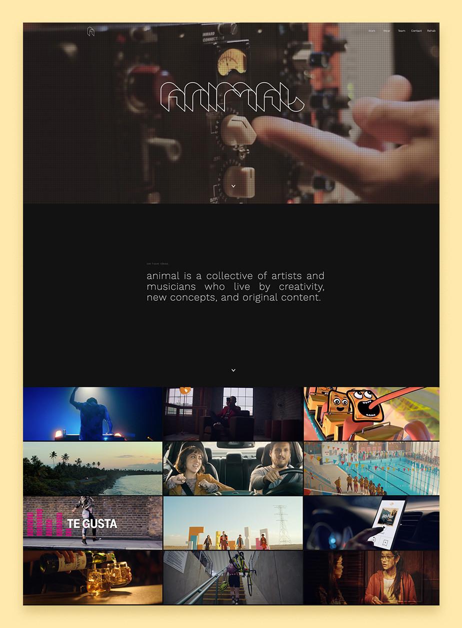 Home page del sito web di Animal Music