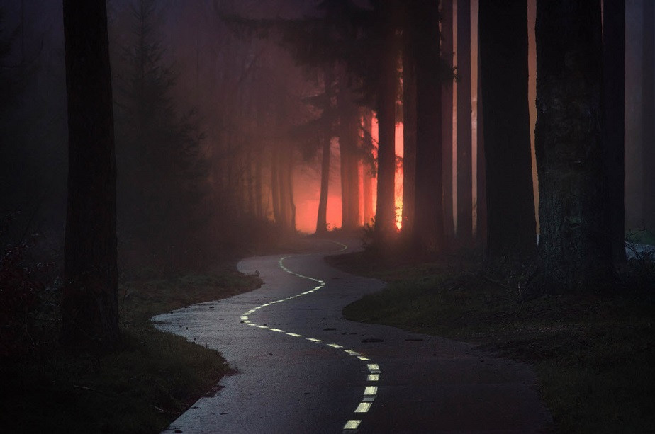Ziz zag road in the forest by Wix landscape photographer Albert Dros