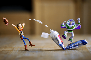 Mitchel Wu Photography, Buzz and Woody