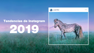 Tendencias de Instagram para Fotógrafos
