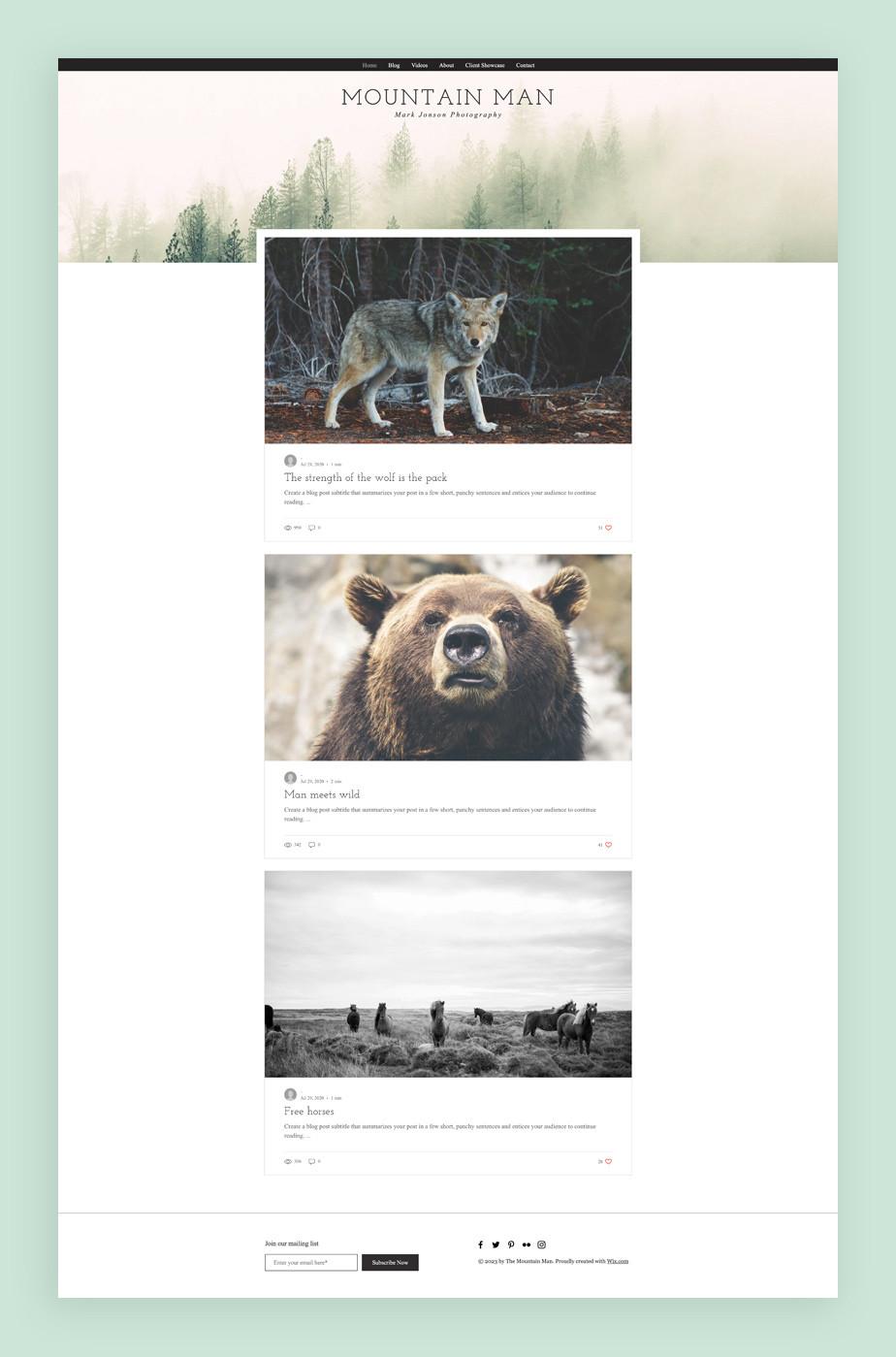 프리랜서 및 전문 사진 작가들을 위한 민트색의 포토그래피 블로그 템플릿