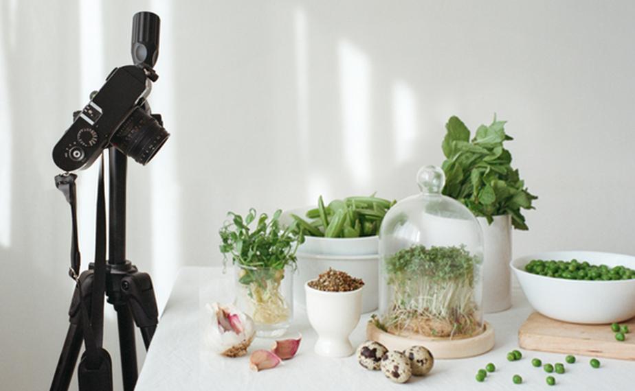 Fotografia produktowa roślin