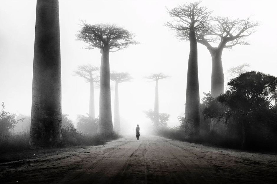 Photographie noir et blanc- Li Na