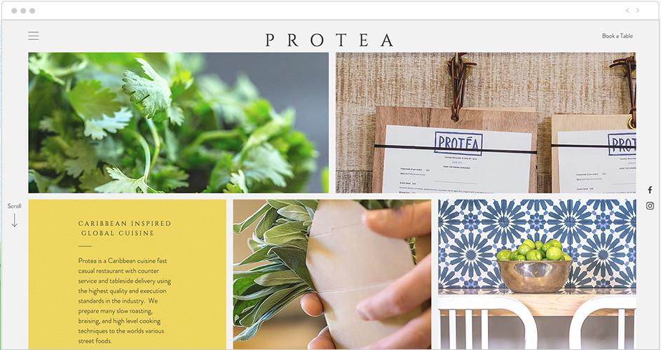 Protea: Parallax examples