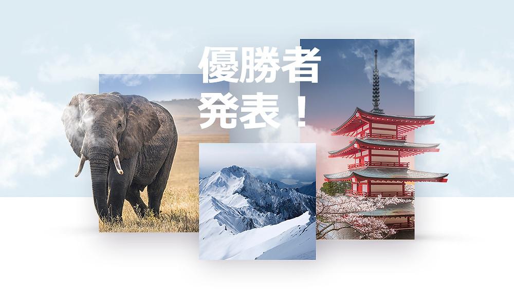 写真ポートフォリオコンテスト最優秀賞者発表