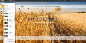 Comment changer la palette de couleurs sur votre site