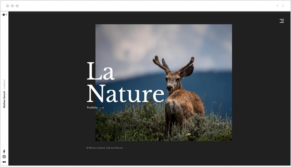 site web pour animaux