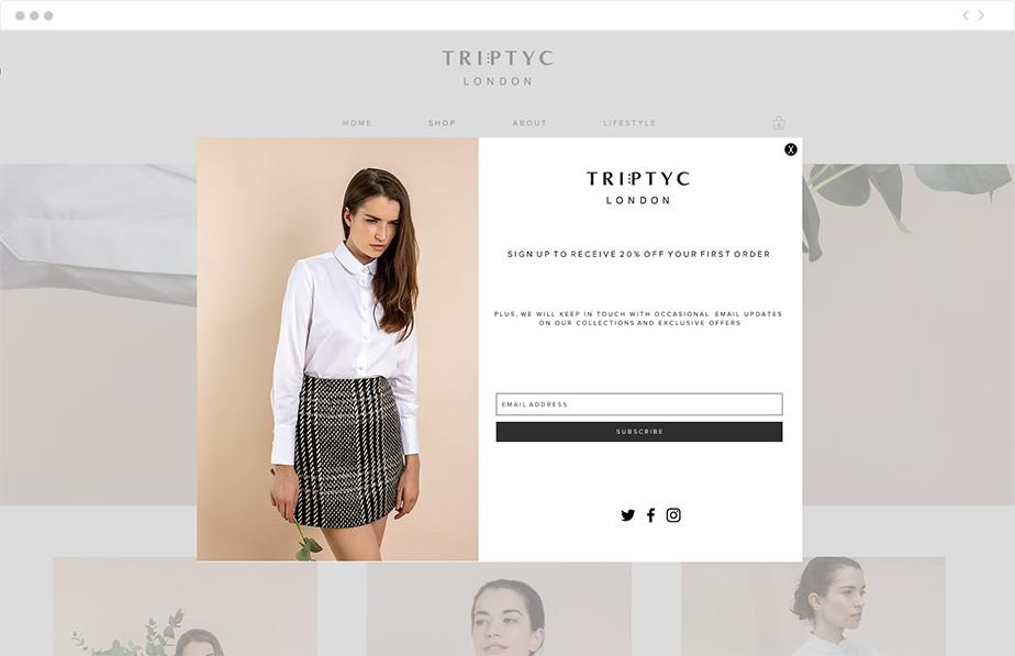 Lightbox example on Triptyc London Wix website