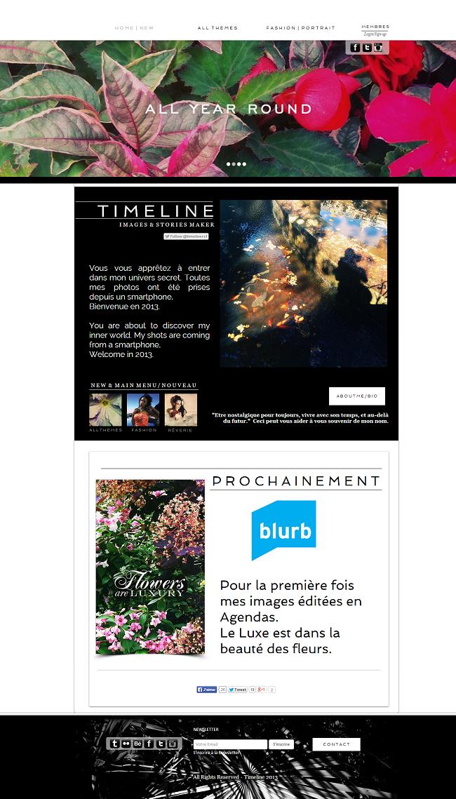 Capture d'écran du site Timelinerz