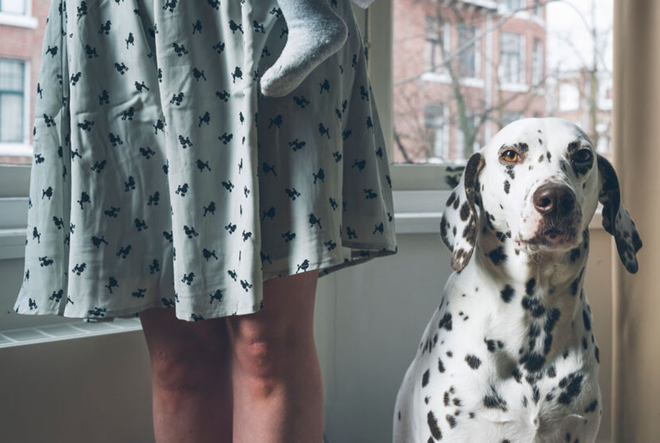 dalmatian dog sitting next to woman with dog pattern dress
