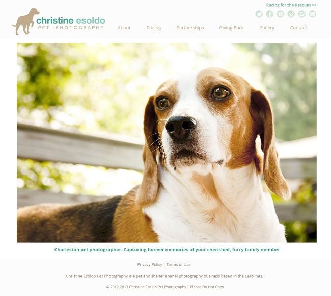 Christine Esoldo Pet Photography