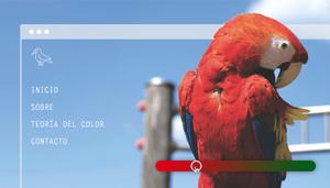 Usa La Teoría Del Color Para Que Tu Página Web Sea Fabulosa