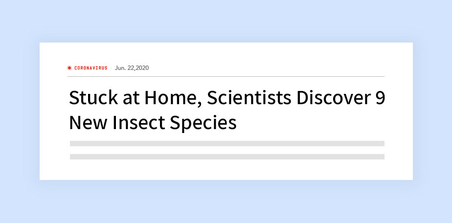 Wired 온라인 신문에 나온 헤드라인 '집에 꼼짝 않고 있던 과학자들이 발견한 9종의 새로운 곤충'