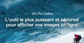 Nouveau ! Wix Pro Gallery, l'affichage d'images le plus abouti du Web