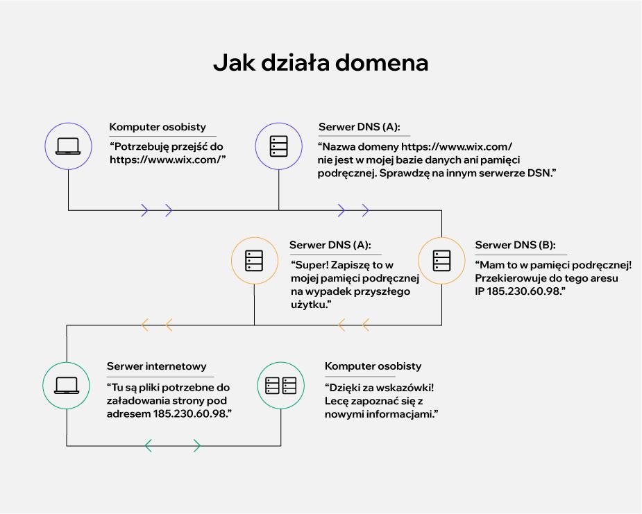 Domena – co to znaczy i na czym polega wyszukiwanie w DNS