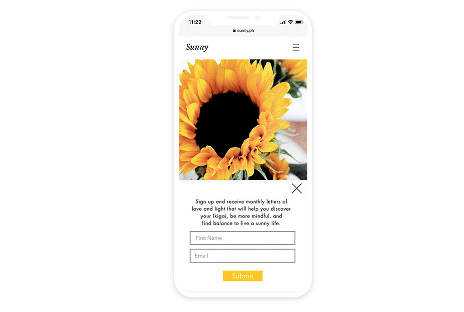 Lightbox example on Wix website Sunny