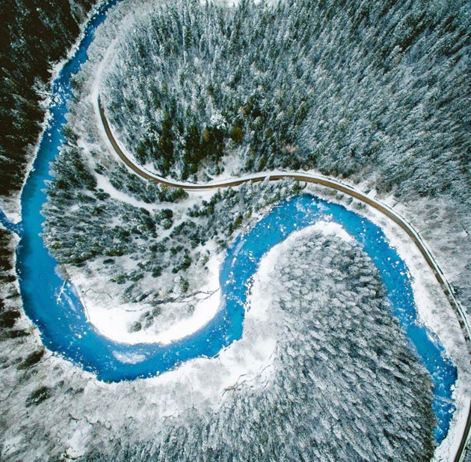 Fotografía aérea de un bosque nevado