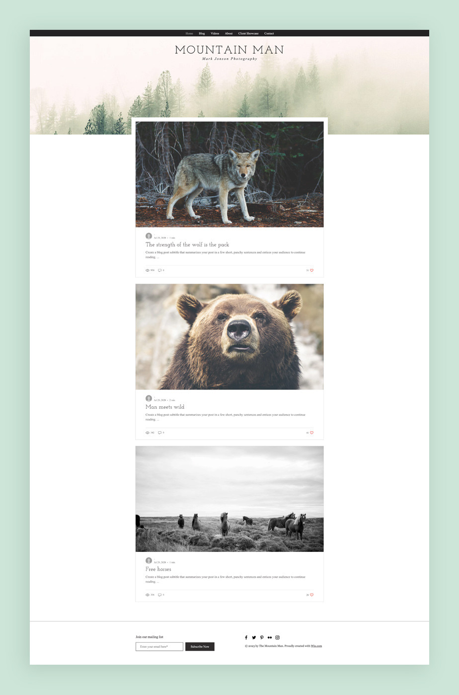 Najlepsze szablony blogów: szablon bloga fotograficznego
