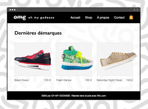 Boutique ecommerce comment faire