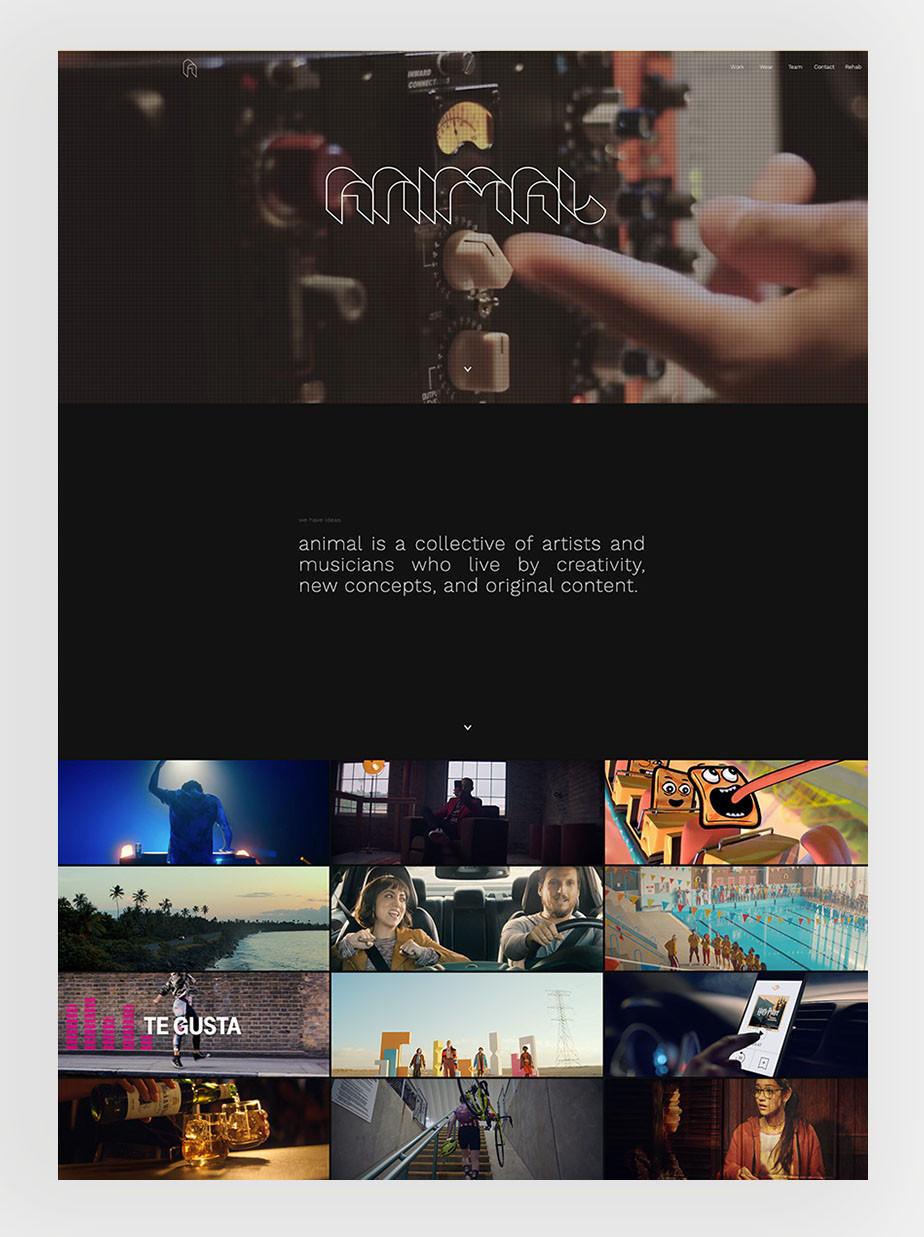 Animal Music een voorbeeld van een Wix website