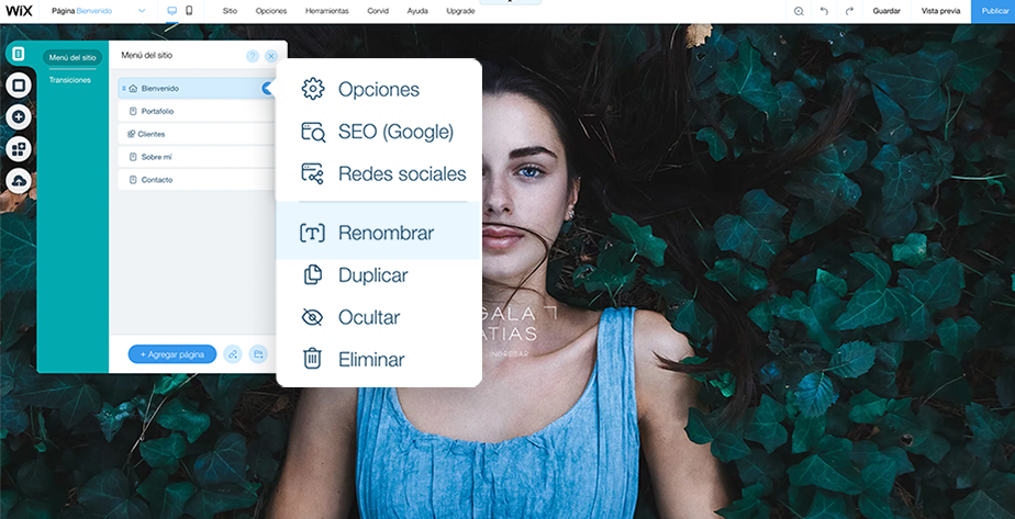 ejemplo de como crear una página splash ene el editor de Wix