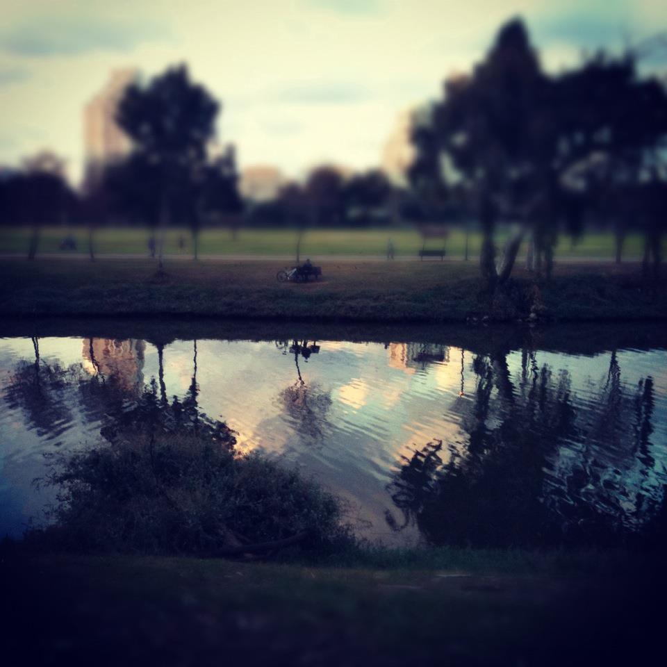 Riacho y árboles de fondo
