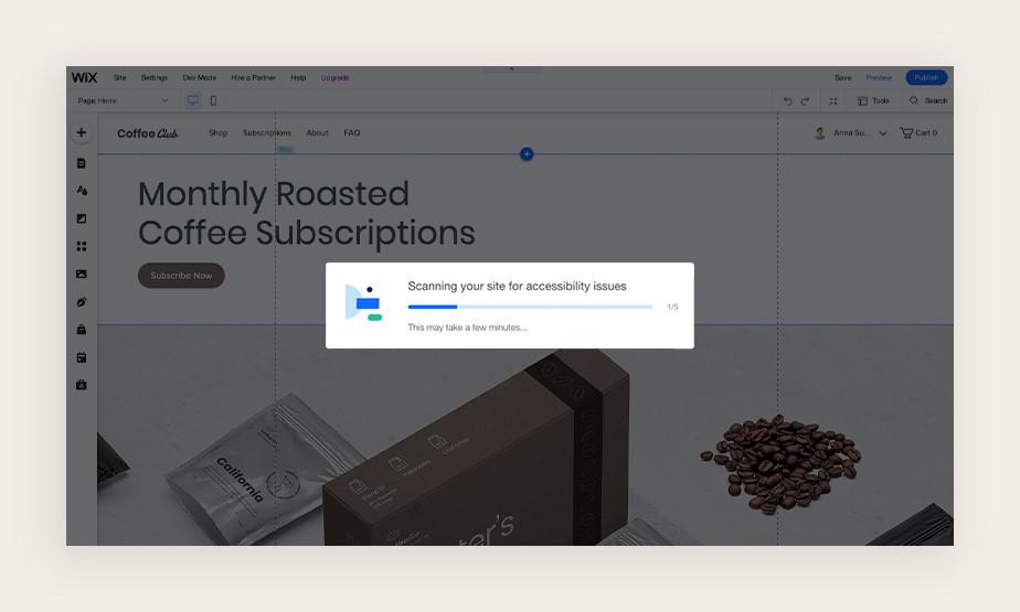 Screenshot van de toegankelijkheid wizard die een site scan uitvoert