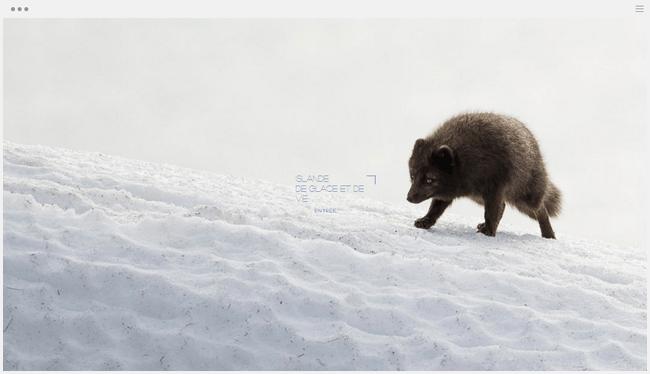 site photographie pictave créé avec Wix