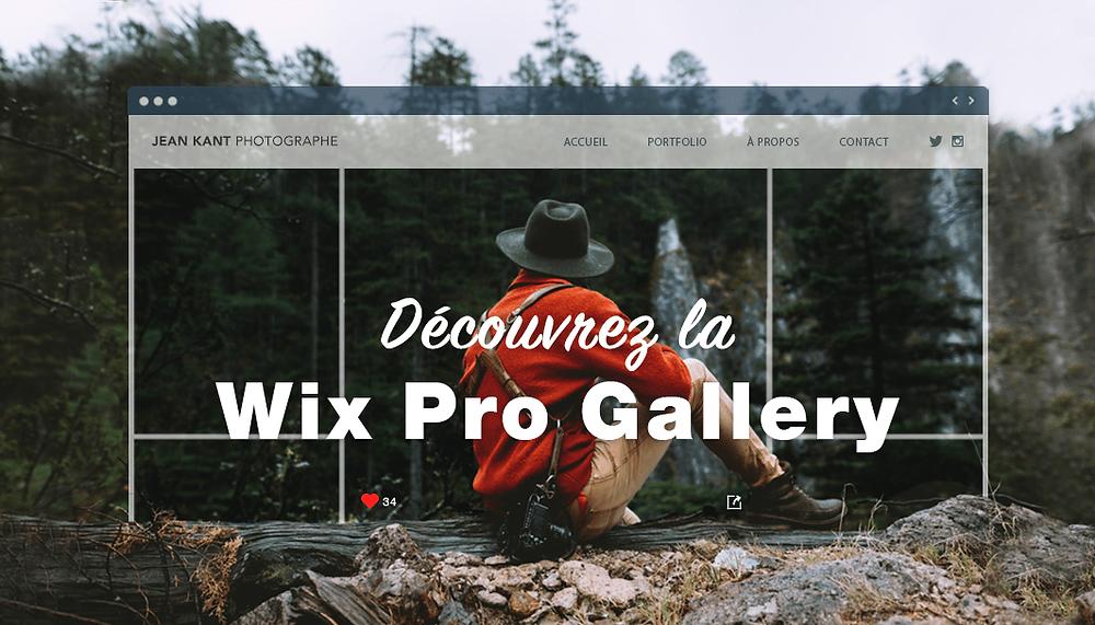 7 bonnes raisons de choisir la Wix Pro Gallery