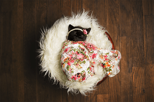 Kitty Lee's New Born Kitten Shoot - Kitten with Bow - Kitten sleeping in a flower blanket