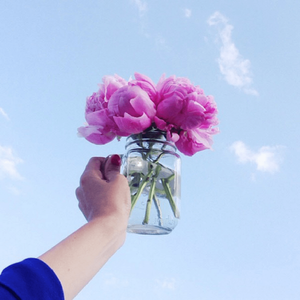 purple flowers in a jar in front of the sky