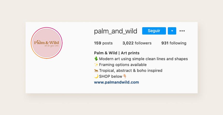 Ejemplo de un perfil profesional de Instagram para tener mas followers