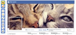 Screenshot de una Foto de Portada de Facebook con dos gatos muy juntos