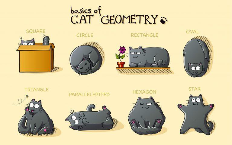 Коврик «Кошачья геометрия»