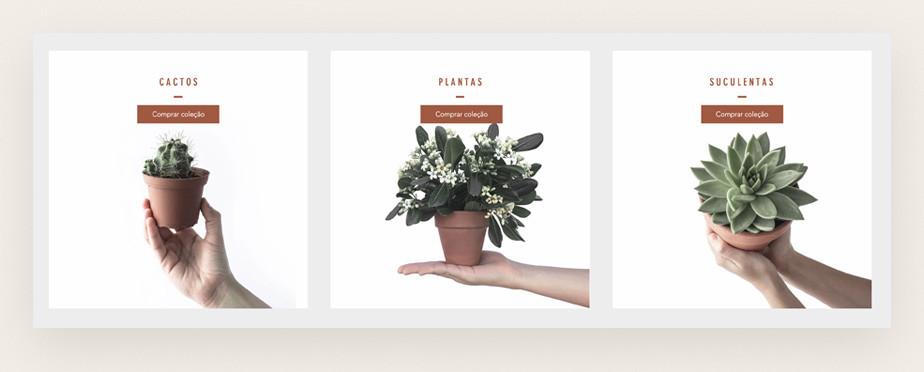 Página de coleções do template para loja virtual de plantas e paisagismo