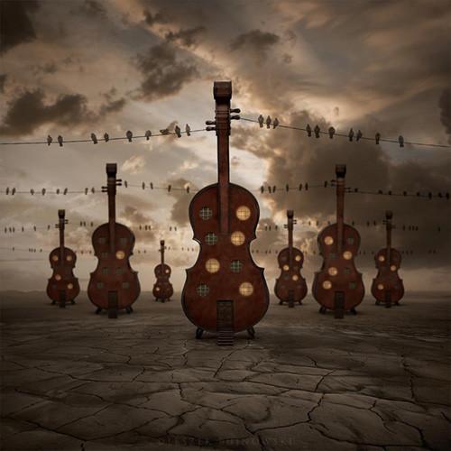 Violines en forma de casa con cables de electricidad que los unen. Encima de los cables, pájaros miran el paisaje y la luz de post atardecer de la foto.