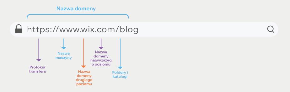 Grafika przedstawiająca elementy domeny