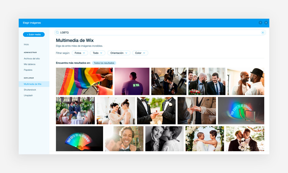 Colección de imágenes LGBTQ en la galería multimedia de Wix