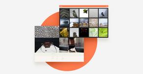 15 herausragende Website Inspirationen von Wix Nutzern