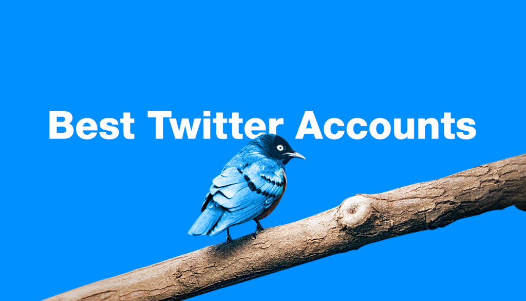 20 Of The Best Twitter Accounts To Follow