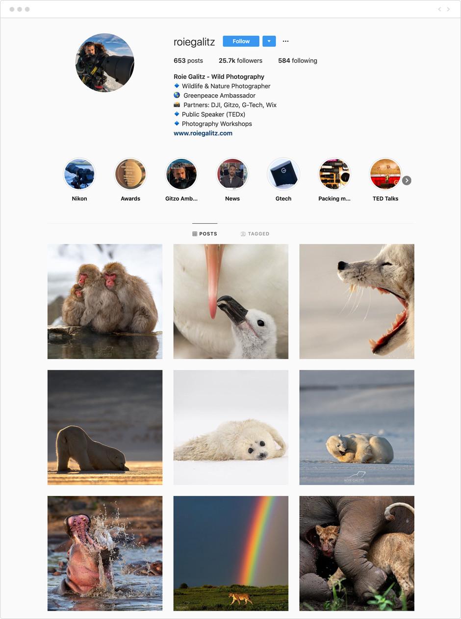 Roie Galitz - Photographes à suivre sur Instagram