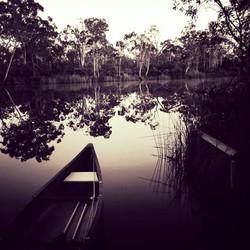 Noosa River