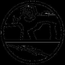 Lapa Logo reverse.png