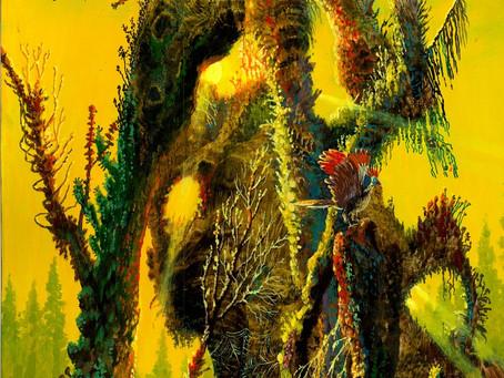 Загадки сказочного леса