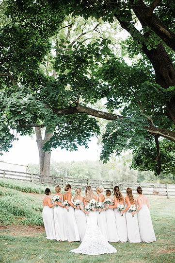 Tine and her bridemaids under the tree.j
